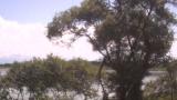 高島市新旭水鳥観察センターライブカメラと雨雲レーダー/滋賀県高島市