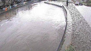 引地川・大山橋付近ライブカメラと雨雲レーダー/神奈川県大和市
