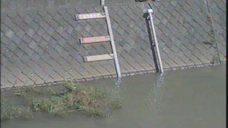 境川 ライブカメラ(根岸橋)と雨雲レーダー/東京都町田市