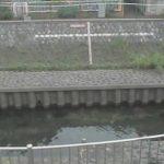 善福寺川(西田端橋)の水位ライブカメラ