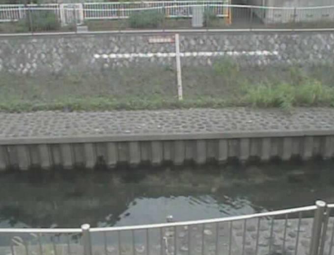 善福寺川(西田端橋)の水位ライブカメラと雨雲レーダー/東京都杉並区