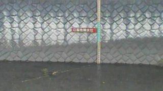 仙川 ライブカメラ(鎌田橋仙川)と雨雲レーダー/東京都世田谷