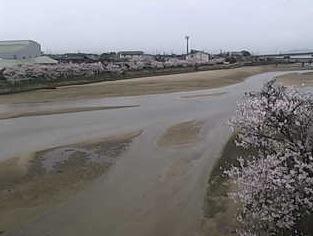 玉島川ライブカメラ