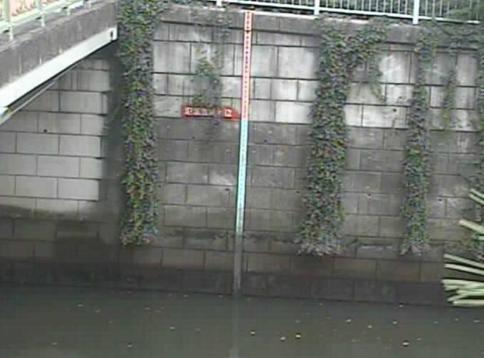 東京都品川区 目黒川(荏原池上)の水位ライブカメラと雨雲レーダー