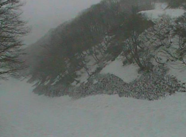 奥大山スキー場・女良谷コースライブカメラと雨雲レーダー/鳥取県江府町