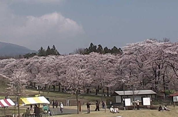 赤城南面千本桜ライブカメラと雨雲レーダー/群馬県前橋市