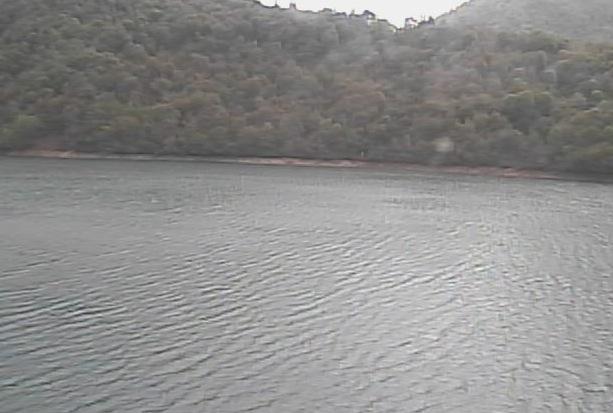 桂湖ライブカメラ