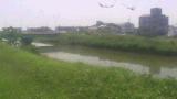 愛知県 河川監視ライブカメラ(26ヶ所)と雨雲レーダー