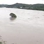 秋田県記録的大雨ライブカメラ(NHK)