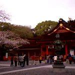 富士山本宮浅間大社の桜ライブカメラ