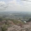 太平山神社ライブカメラ