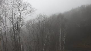 蓼科高原別荘地が見れるライブカメラと雨雲レーダー/長野県茅野市