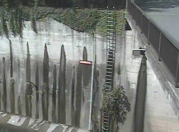 石神井川 ライブカメラ(加賀橋)と雨雲レーダー/東京都板橋区
