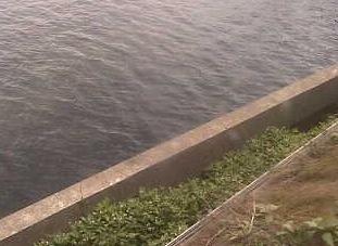 石川県七尾市 田鶴浜野鳥公園ライブカメラと雨雲レーダー