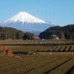 お茶の郷 富士市製茶工場から見える富士山ライブカメラ