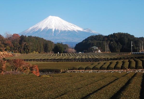 お茶の郷 富士市製茶工場から見える富士山ライブカメラと雨雲レーダー/静岡県島田市
