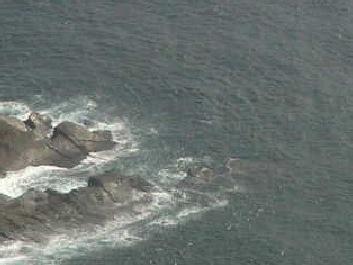 都井岬灯台から見えるライブカメラ