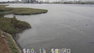 多摩川、鶴見川、相模川ライブカメラと雨雲レーダー/東京・神奈川