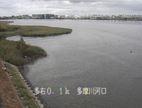 東京・神奈川 多摩川、鶴見川、相模川ライブカメラと雨雲レーダー