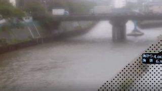 境川ライブカメラと雨雲レーダー/神奈川県藤沢市