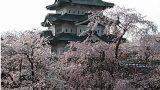 弘前城 天守閣ライブカメラと雨雲レーダー/青森県弘前市