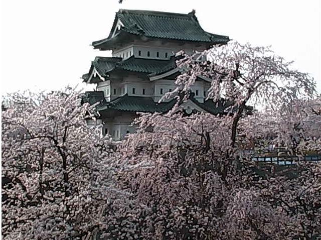 弘前城 天守閣ライブカメラ
