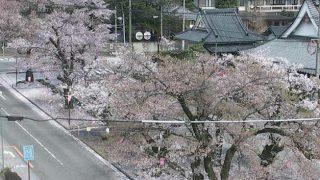 飯田市並木通りライブカメラと雨雲レーダー/長野県飯田市