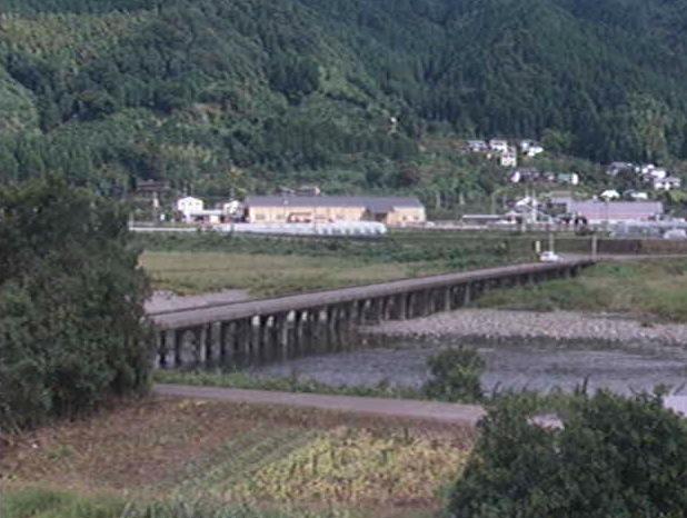 勝浦川、星谷橋ライブカメラ
