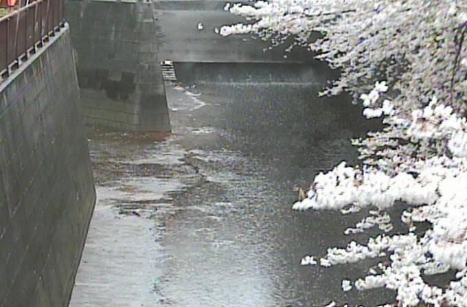 東京都目黒区 目黒川 合流点(宝来橋上流)ライブカメラと雨雲レーダー