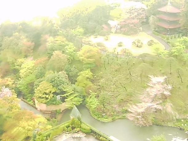 椿山荘ライブカメラと雨雲レーダー/東京都文京区