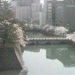 福井城跡ライブカメラ