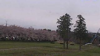 大胡ぐりーんふらわー牧場ライブカメラと雨雲レーダー/群馬県前橋市