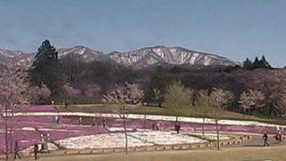 赤城南面千本桜 ライブカメラと雨雲レーダー/群馬県前橋市