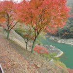 秋の紅葉が美しい京都 嵯峨野トロッコ列車のストリートビュー