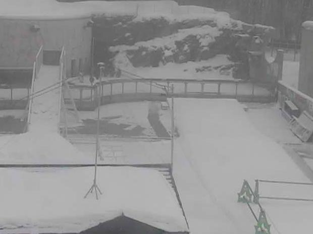 旭山動物園 ペンギン館前ライブカメラと雨雲レーダー/北海道旭川市