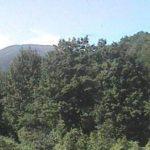 山形県立自然博物園ライブカメラ