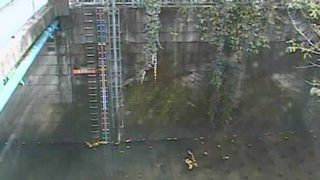 神田川 ライブカメラ(南小滝橋)と雨雲レーダー/東京都新宿区