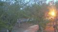 唐津城 藤の花 ライブカメラと雨雲レーダー/佐賀県唐津市