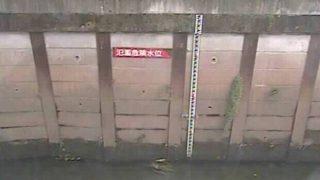 石神井川 ライブカメラ(稲荷橋)と雨雲レーダー/東京都練馬区