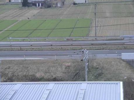 北陸道・県道259号・積雪量などライブカメラ(5ヶ所)