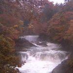 川内大滝公園ライブカメラ