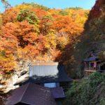 阿弥陀寺360度パノラマカメラ