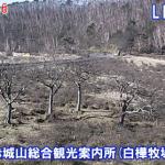 赤城山総合観光案内所 (白樺牧場)ライブカメラ