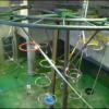 旭山動物園のスマートフォン向けライブカメラ配信サービス「Live Zoo In あさひやま」