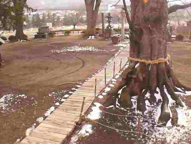 白鳥神社ライブカメラ