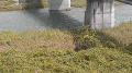 長門市役所・各道路・海ライブカメラ(10ヶ所)と雨雲レーダー/山口県長門市