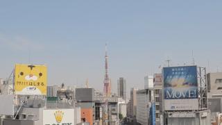 東京タワー(4K)ライブカメラと雨雲レーダー/東京都港区