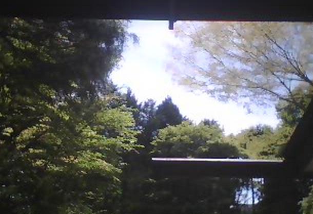 箱根夕霧荘ライブカメラ