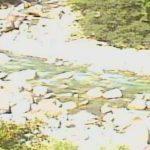 木曽川水系:落合川・中津川ライブカメラ(8ヶ所)