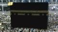 信州善光寺の「善光寺御開帳」ライブカメラと雨雲レーダー/長野県長野市